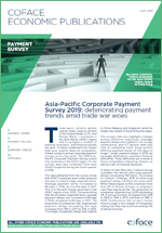 APAC payment Survey