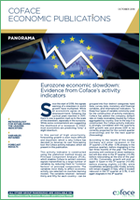Eurozone-economic-slowdown-Evidence-from-Coface-s-activity-indicators_medium
